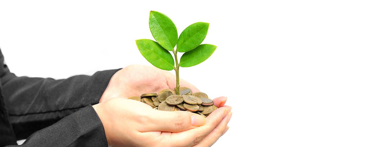 Financiemiento-verde